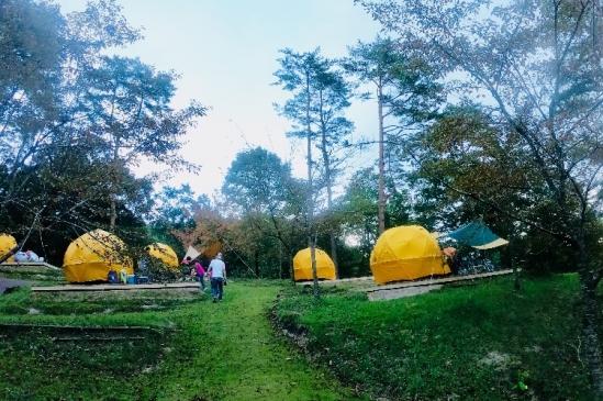 テントキャンプサイト